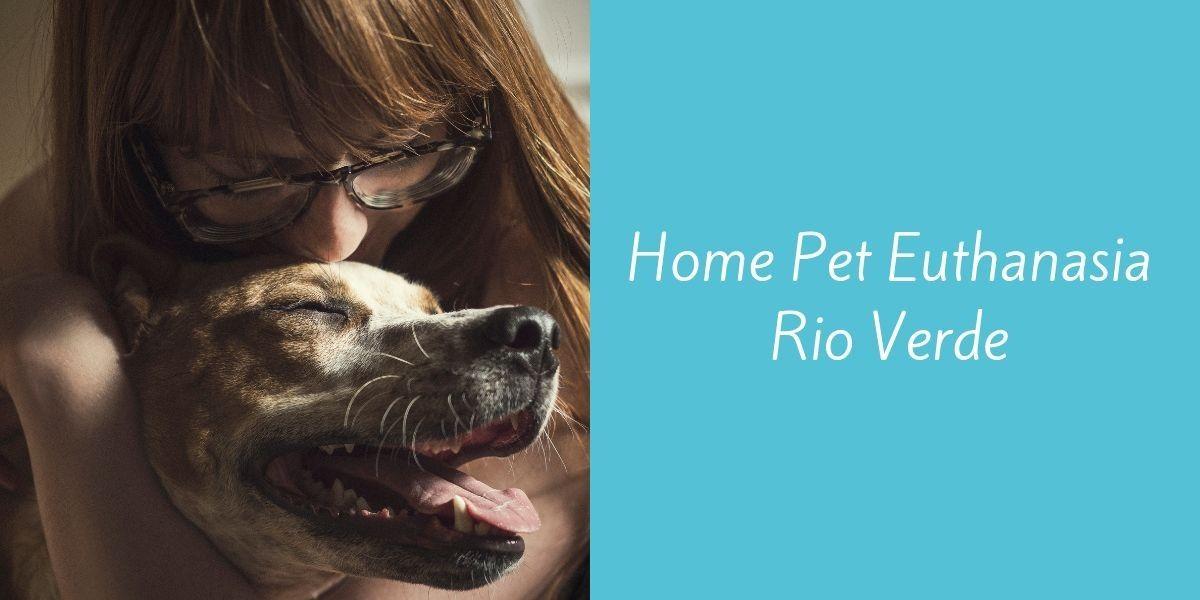 Home-Pet-Euthanasia-Rio-Verde