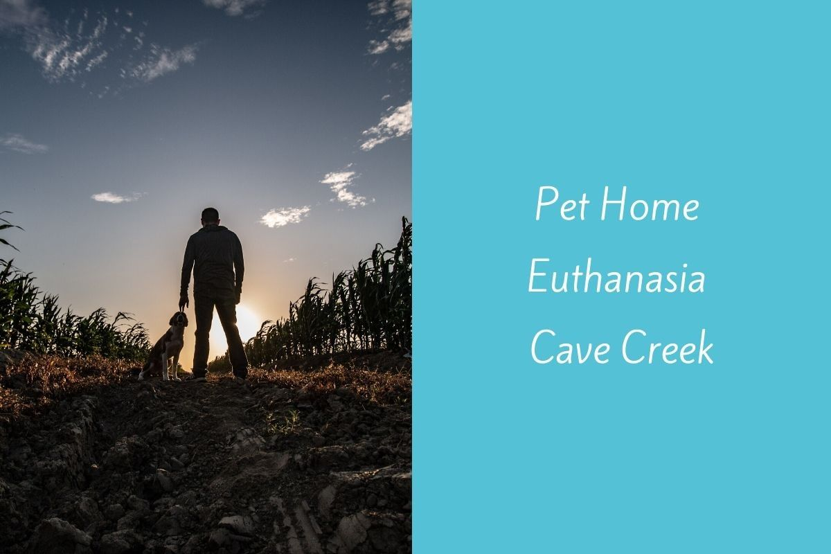 Pet-Home-Euthanasia-Cave-Creek