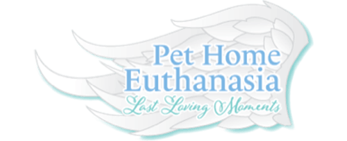 In Home Pet Euthanasia | Phoenix, Scottsdale, Peoria, Chandler